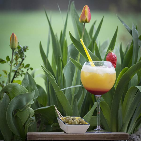 UnbreakMyGlass - Verres plastiques incassables - piscine cocktail 65cl