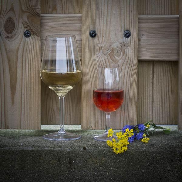 UnbreakMyGlass - Verres plastiques incassables - verre cabernet 47cl verre inao 22cl